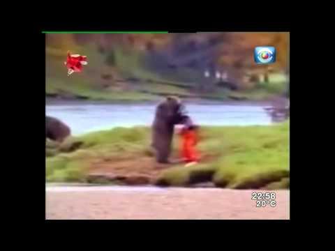 Colección de videos graciosos en Bendita TV (9-noviembre-2014).