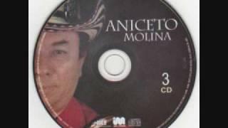 Aniceto Molina-El diario de un Borracho