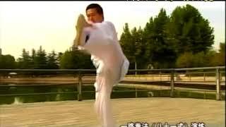 Li Bao Ting 李宝廷 Hong Jun Sheng Tai Chi Style Chen Xinjia Yilu
