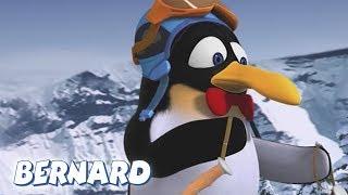 Bernard Bear | Skiing 2 AND MORE | Cartoons for Children