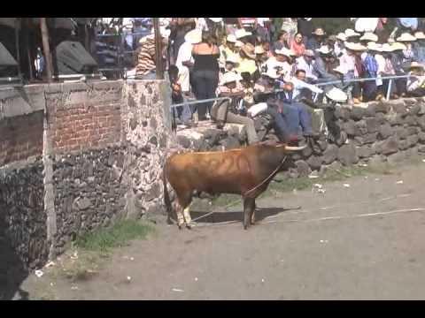 Jaripeo En El Ranchito gto