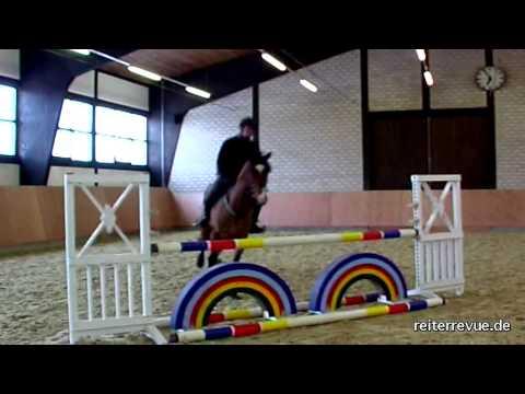 Springtipps F 252 R Heftige Pferde Youtube