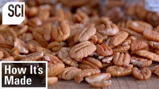 How Pecans Are Manufactured | How It's Made