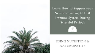 Learn How to Support your Nervous System, GUT and Immune System During Stressful Periods