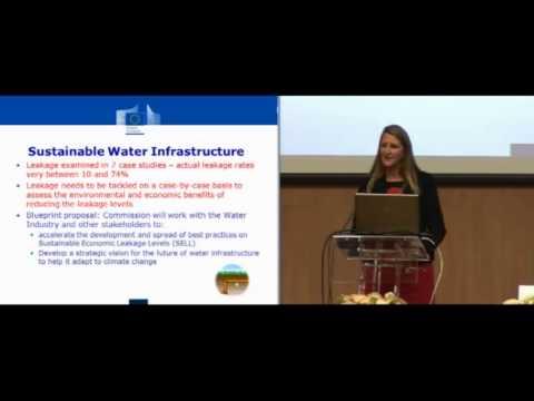 Tackling Water Pollution - Water Infrastructure: Faergemann - EU Water Blueprint Conference 2012