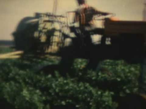 UTB Stork Tractor