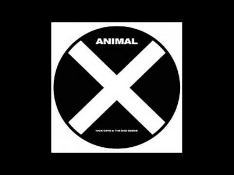 Nick Cave &amp; the Bad Seeds - &quot;Animal X&quot; Record Store Day Single 2013 Audio only