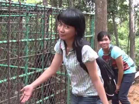 Mengunjungi Kebun Binatang Singkawang-4