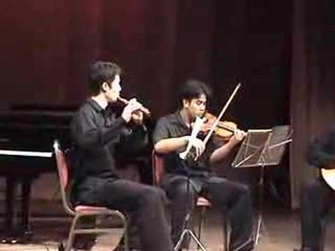 Ferdinando Carulli - Trio in D- I.Allegro