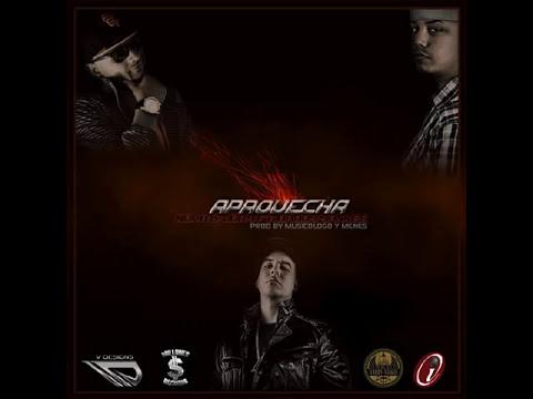 Nova Y Jory Feat. Daddy Yankee - Aprovecha (Original) (Sin Promo) (Mucha Calidad)