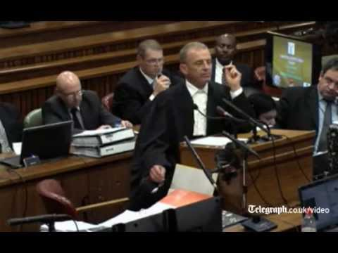 Oscar Pistorius murder trial: 'Reeva wanted to leave'