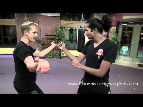 Tiger Kung Fu Fighting Technique 1 video