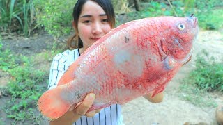 Yummy Tilapia Fish Cooking Ginger - Tilapia Frying Ginger Recipe - Cooking With Sros