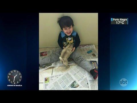 Família procura cães que ajudam no tratamento de filho autista | SBT Notícias (20/11/17)