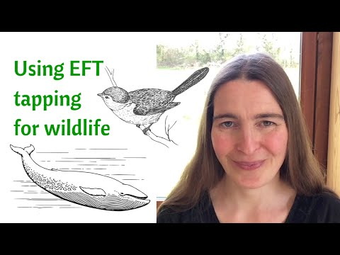 How to use EFT tapping for wildlife