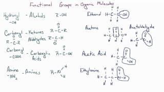 Introduction to Biology - 5 - Cell Chemistry