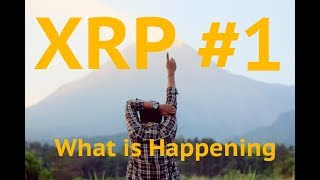 Ripple Trump XRP Plans within Plans - Monday Crypto Live w Kungfu
