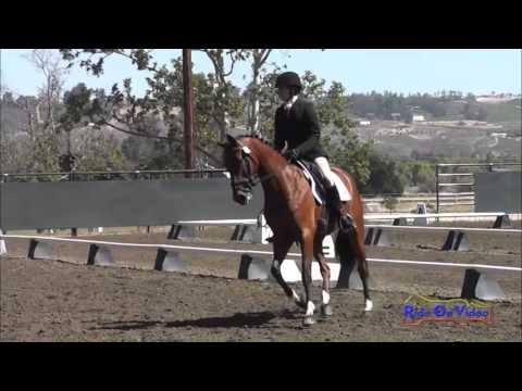 103D Robyn Fisher Nash - With Class Training Horse Dressage Galway Downs May 2013