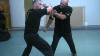 SiFu Arsenije Jelovac-Los Angeles 2015