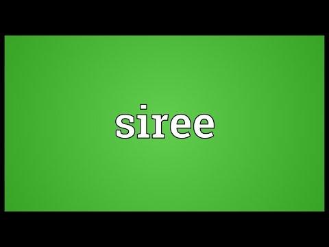 Header of siree