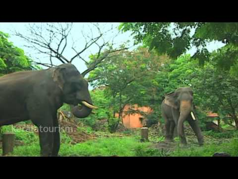 Thrissur district, Tourism Projects, Kerala, India