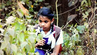 കൊള്ളിമുട്ടായിം കഞ്ചാവും | Kollimuttayim Kanchavum | Essaar Media
