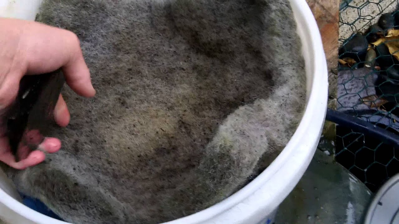 My diy pond filter youtube for Diy pond filtration