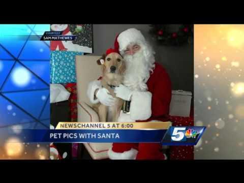 Pet photos with Santa benefit humane society