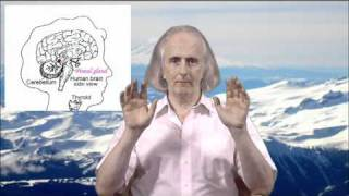Healing the Pineal Gland Transmission
