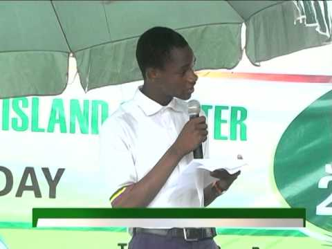TVC news coverage of NIGER-ATLANTIC RESTORATION PROJECT - FLAG-OFF ON WORLD ENVIRONMENT DAY 2015