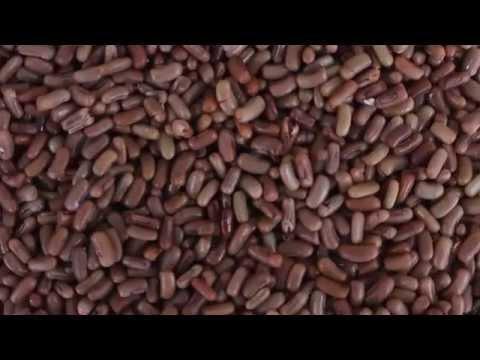 Kenyan Traditional Foods