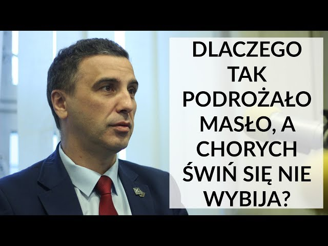 Sachajko: Apeluję do ministra Szyszko, aby zaczął mieć realny nadzór nad Polskim Związkiem Łowieckim