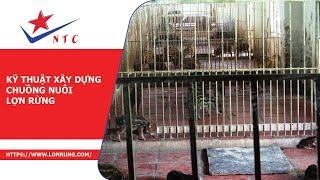 Kỹ Thuật Xây Dựng Chuồng Nuôi Lợn Rừng - Trang Trại Lợn Rừng NTC