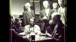 Watch Lloyd Rosin The Beau video