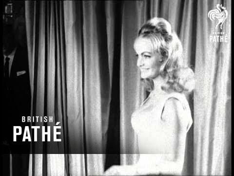 Kitten Parade (1960)
