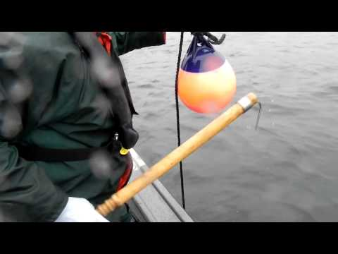 Langara Fishing Lodge - Halibut Harpoon on Salmon Gear