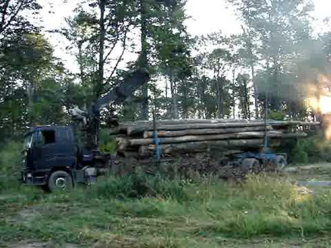 Ciężarówka w Lesie