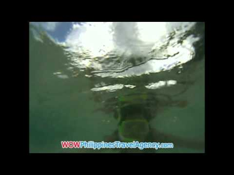 Boracay Snorkeling - WOW Philippines Travel Agency