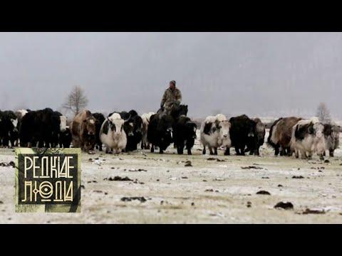 Сойоты. Пастухи снежных верблюдов | Редкие люди 🌏 Моя Планета