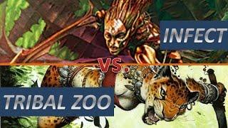 Partida comentada Modern: Infect vs. Tribal Zoo #mtg