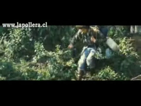 Trailer de Into the wild subtitulado español