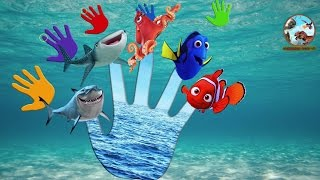 Finger Family Fishes Fun | Bài Hát Gia Đình Ngón Tay Cá Vui Nhộn