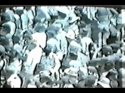 Tommy Bolin Band Post Toastee Mile High Stadium