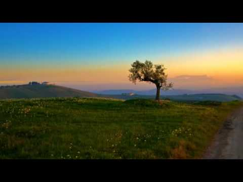 Ennio Morricone - La califfa