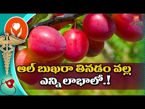 Amazing Health Benefits of Albakara Fruit | Al bukhara Fruit Benefits in Telugu | YOYO TV Health