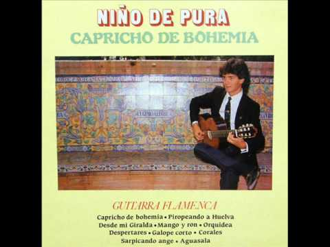 Niño de Pura/Capricho de Bohemia