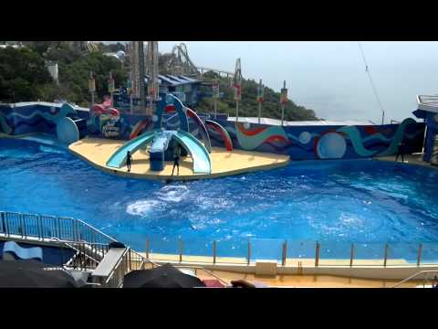 Hong Kong Ocean Park | Grand Aquarium