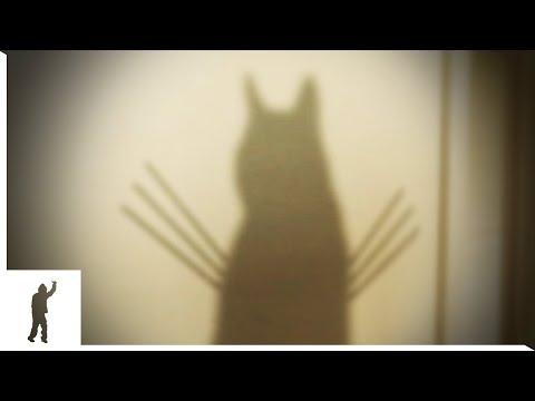 ウルヴァリンな猫が・・・...