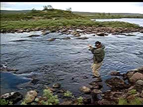 Grayling Land | Grayling fly fishing in Finland!