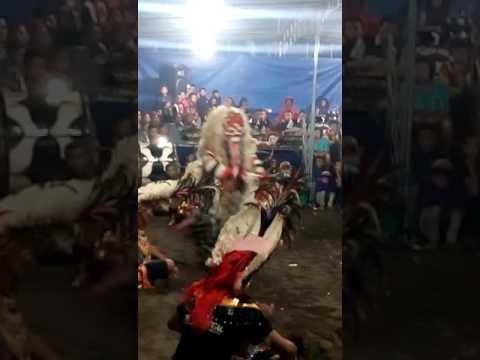 Leak Temanggung Ganas Part 2